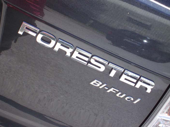 b-logo-forester.jpg