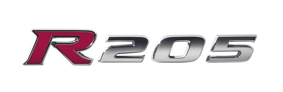 logo_r205.jpg