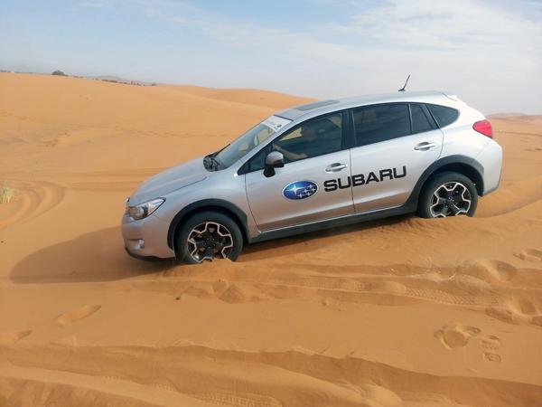 Subaru en las dunas