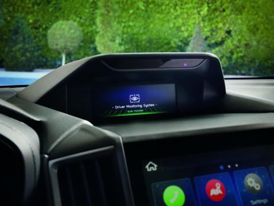 Sistema de monitorizción del conductor